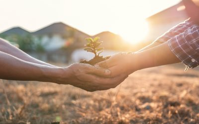 5 Ways Gardening Can Help theWorld